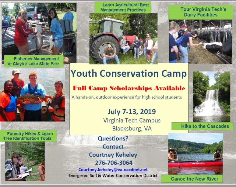 Conservation Camp Flyer